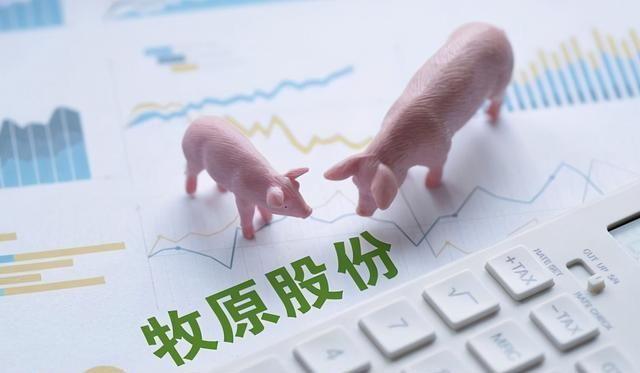 """""""猪茅""""一年卖猪1800万头,产肉量可供一省全年食用,近5亿资金追捧"""