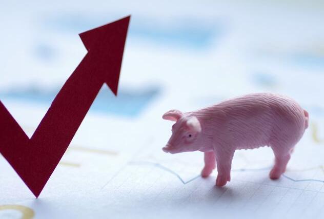 贵阳:生猪生产恢复态势良好,超额完成2020年目标任务