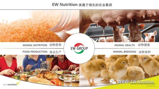 EW Nutrition收购Novus(诺伟司)饲料质量和色素业务