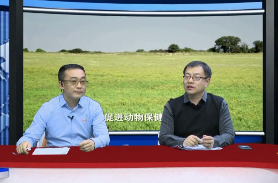 周磊:蓝耳病毒株重组频繁造成稳定猪场发病