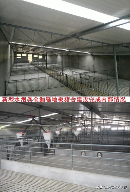当前投资一个猪场所需的养殖面积和投入成本参考