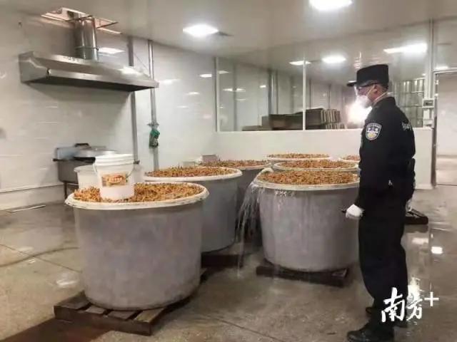 530吨冷冻猪耳、鸡爪、牛仔骨被截获!广东江门侦破2.92亿元特大走私案