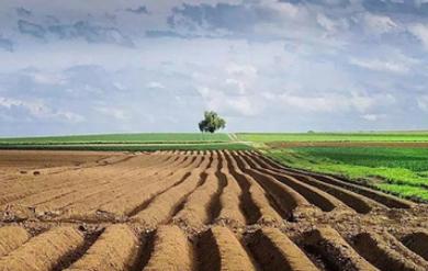 """种业""""卡脖"""",亟待关注种业创新,夯实种质资源根基,打造农业""""芯片"""""""