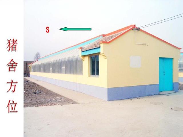 新建养猪场需要符合什么条件?地址选择与合理布局是第一步