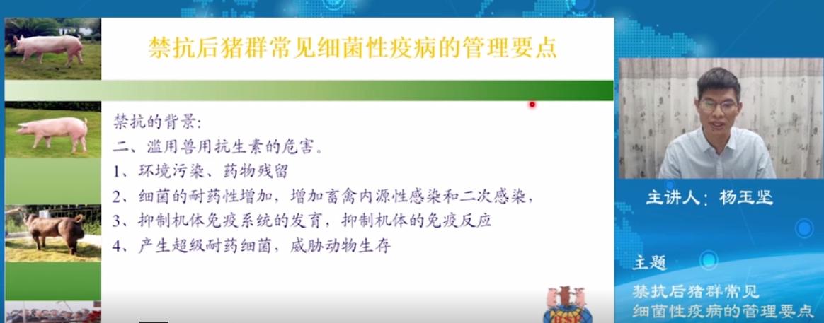 杨玉坚:禁抗后猪群常见细菌性疫病的管理要点