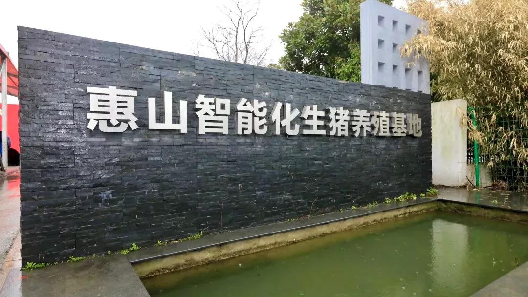 无锡惠山:智能化生猪养殖基地惊艳亮相!