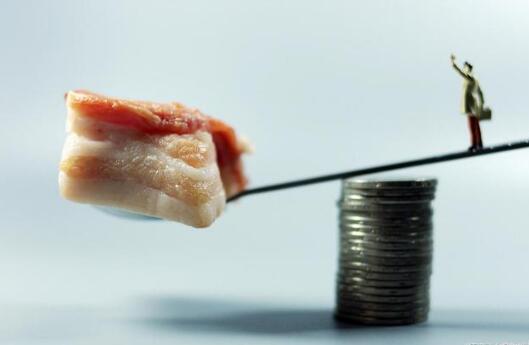 2023年市场规模或达64亿美元,人造肉,下一个风口吗?