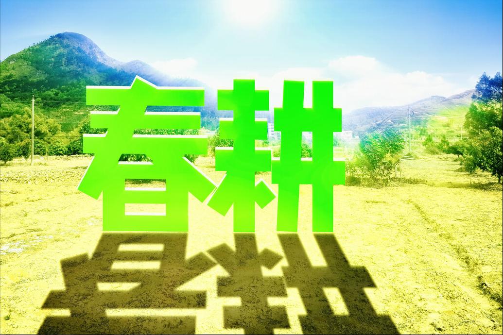 """3月8日饲料原料,玉米陷入""""涨跌争局""""中,手中有粮才是王道"""