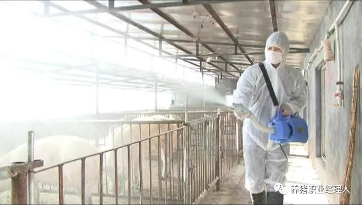 技术:七类消毒剂对非洲猪瘟病毒荧光定量PCR检测结果的影响