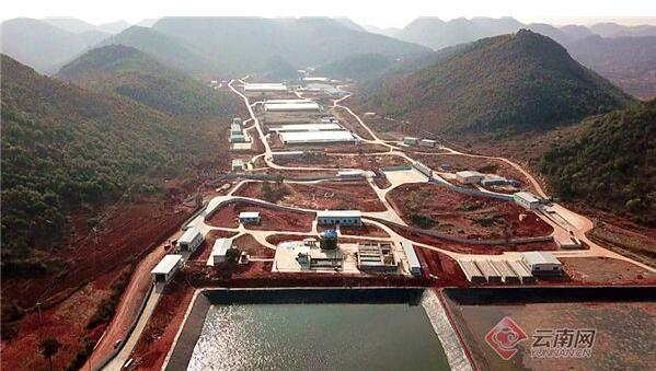 云南砚山:预计全年存栏31万头 生猪生产呈现良好势头