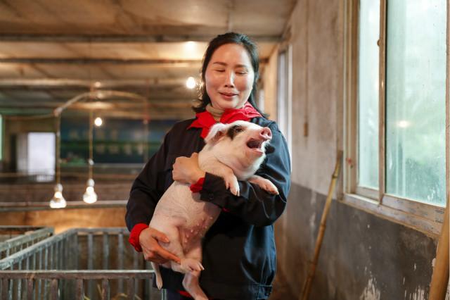 牧原股份秦英林:猪价短期内可能小幅震荡,整体呈下降趋势