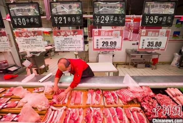 3月10日中央冻猪肉储备投放1万吨,成交情况良好!
