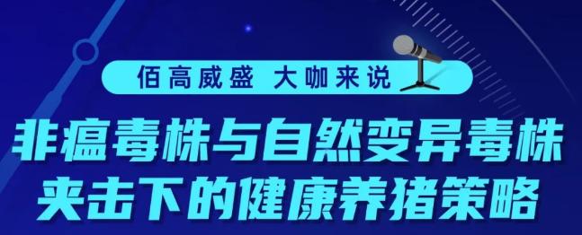 """王爱勇:非瘟""""双毒""""夹击,如何应对?系统防控是关键!"""