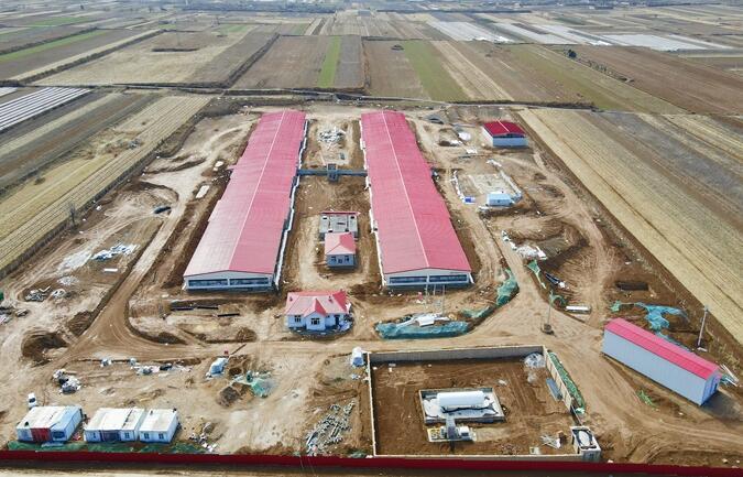 陕西渭南:正大澄城百万头生猪全产业链项目第一养殖单元即将建成投产