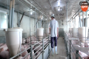 猪场管理之人员进场前清洁消毒操作流程