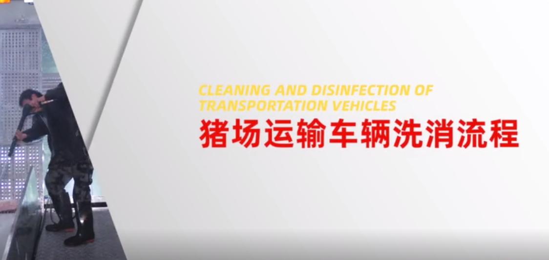 猪场消毒之猪场运输车辆洗消流程