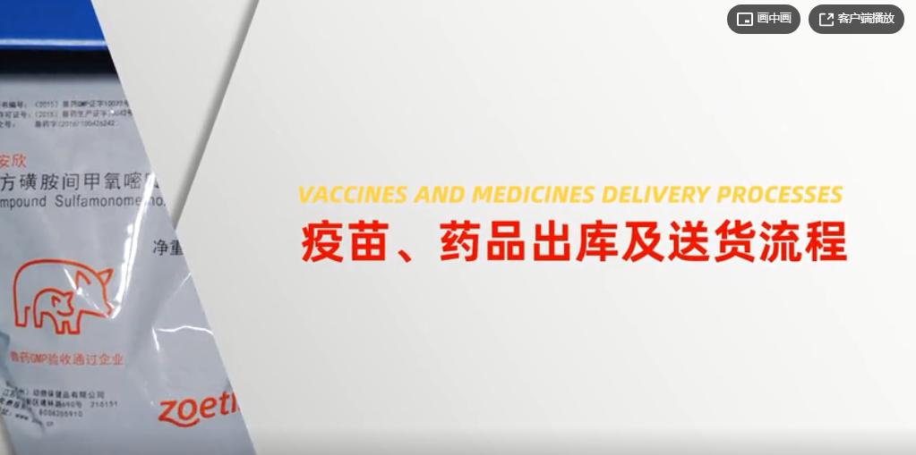 猪场运输之疫苗药品出库及送货流程