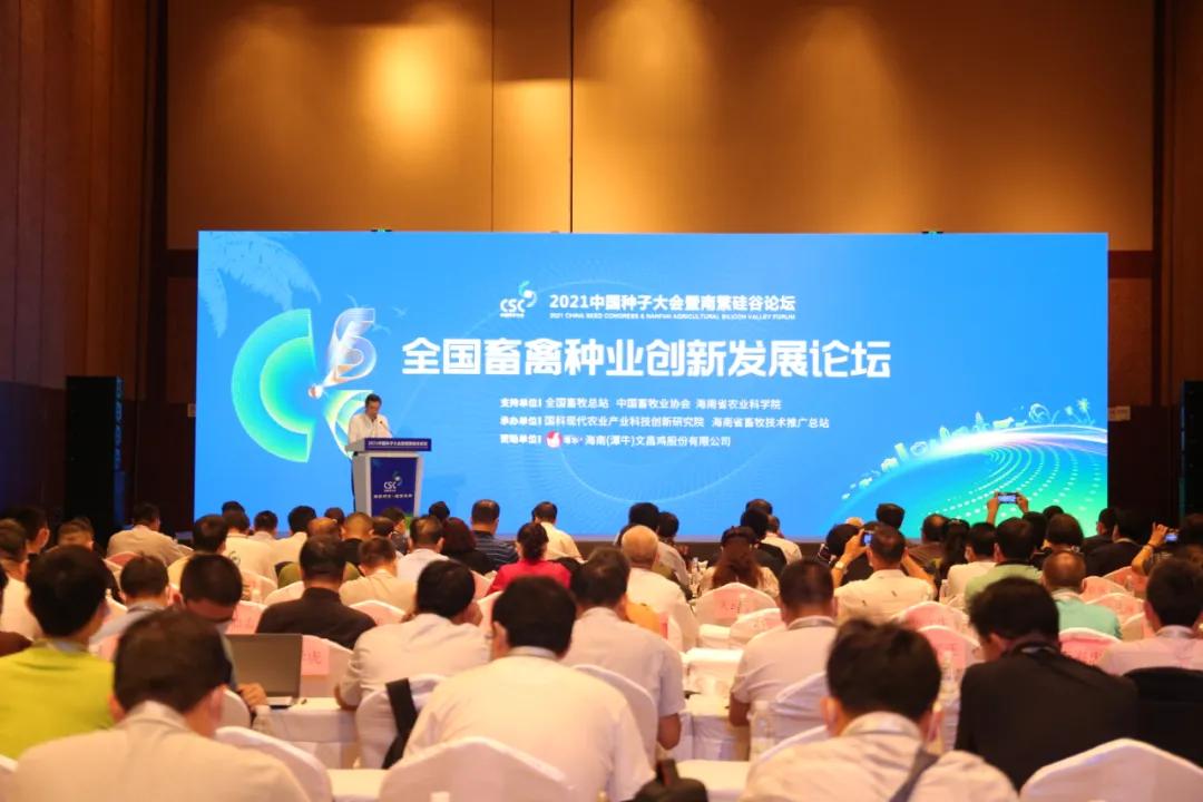 中国畜禽种业翻身仗怎么打?猪禽牛羊四大体系首席专家一起支招