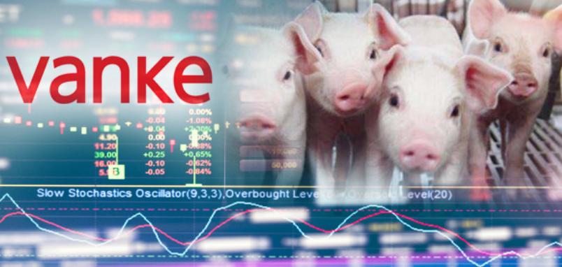 4000万人16亿斤猪肉,万科养猪对标牧原模式,销量直超正邦2020年全年