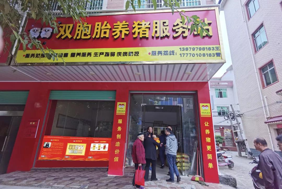 """双胞胎集团成立养猪服务站!为规模猪场提供""""9大解决方案""""!"""