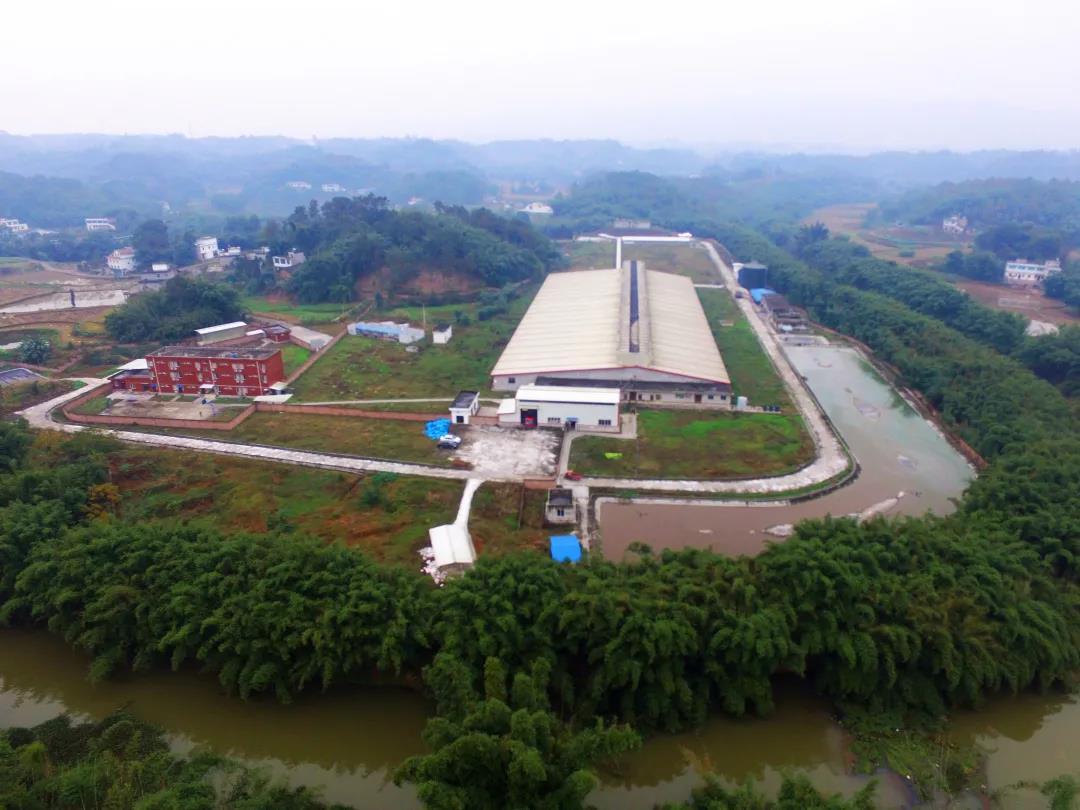 广西贺州猪业爆发式增长!京基智农规划500万头楼房养猪项目