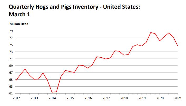 美国猪价与玉米齐飞,瘦猪肉期价创7年新高,国内猪价还能跌多少
