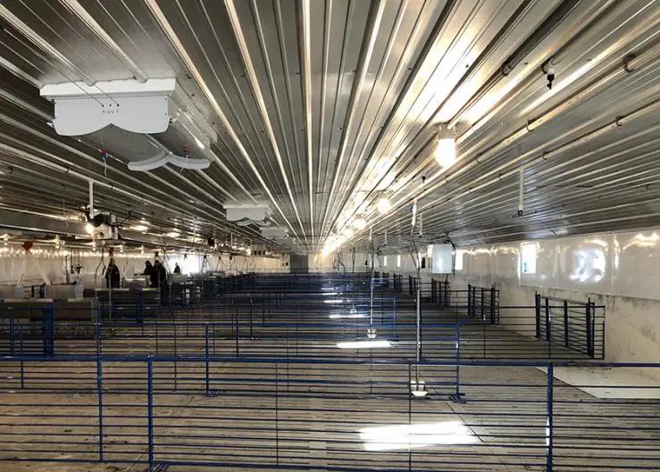 猪舍新建有哪些设计细节可以提高日常操作效率同时保障人员安全