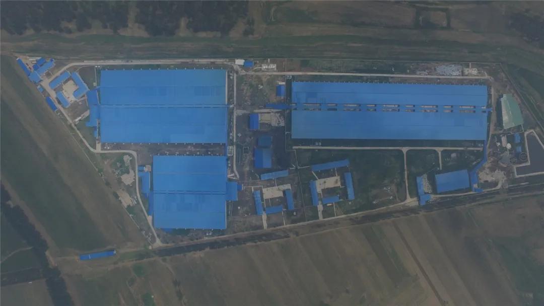 沈阳市政府领导听取北方扬翔工作汇报,肯定成绩并提出发展建议