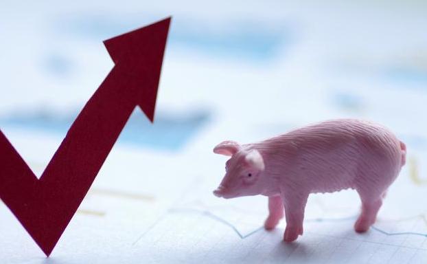 暴利时代告终:一季度生猪销售均价回落21% 正邦科技净利预减超6成