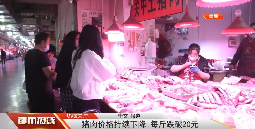 猪肉价格持续下降,将去年同期下降7元每斤,跌破20元大关!