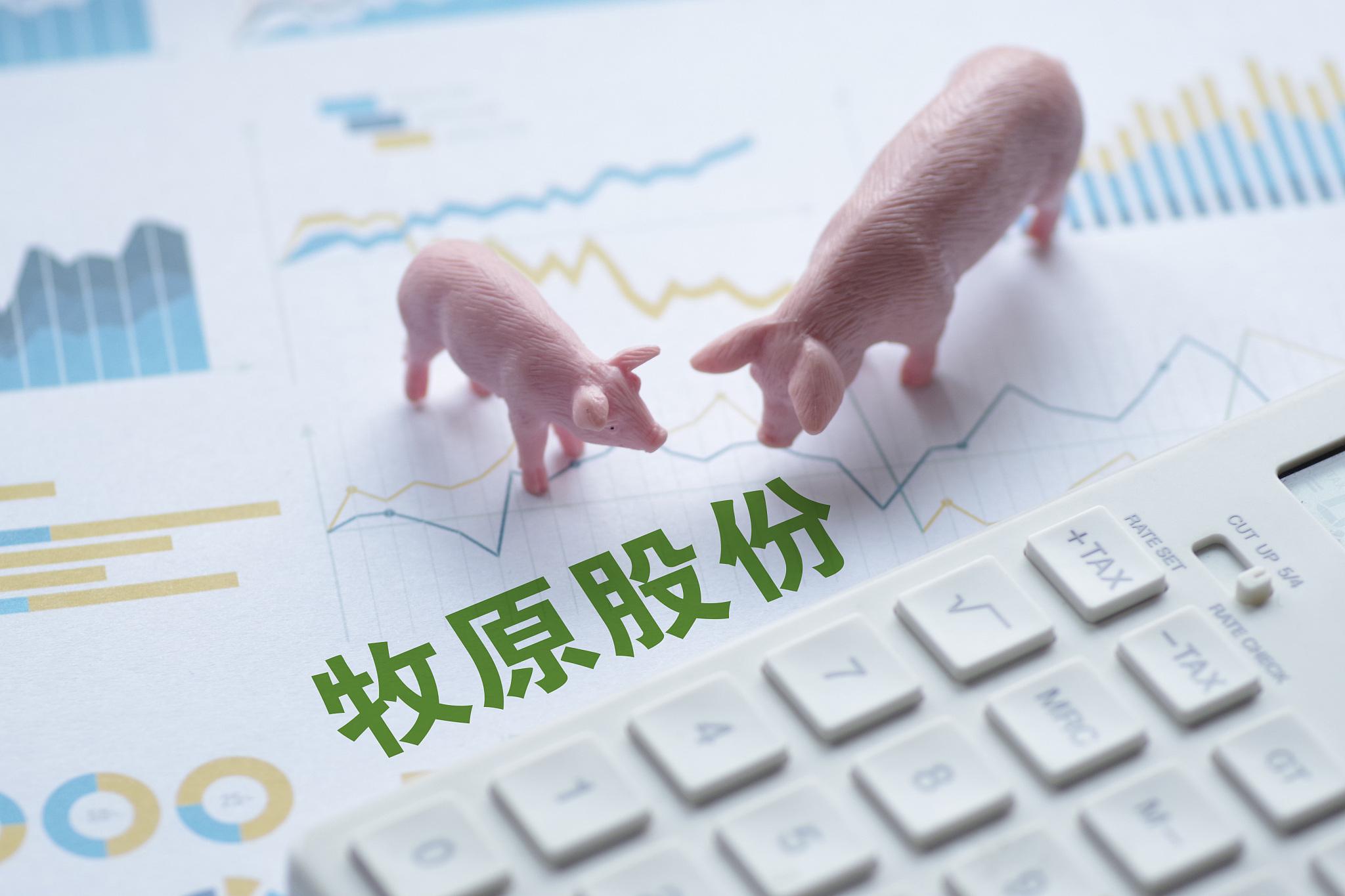 """""""猪茅""""一季度盈利超67亿元,同比增62%,同行业绩普遍大幅亏损"""