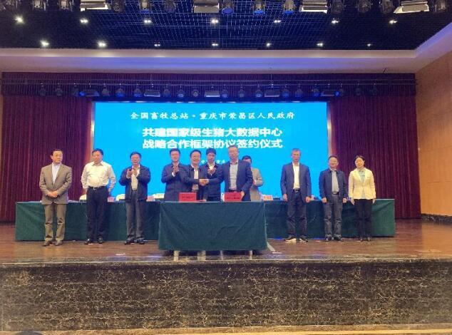 签约!全国畜牧总站与荣昌区共建国家级生猪大数据中心