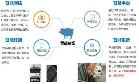 中国移动开始养猪了!不仅帮别人养,还自己养!