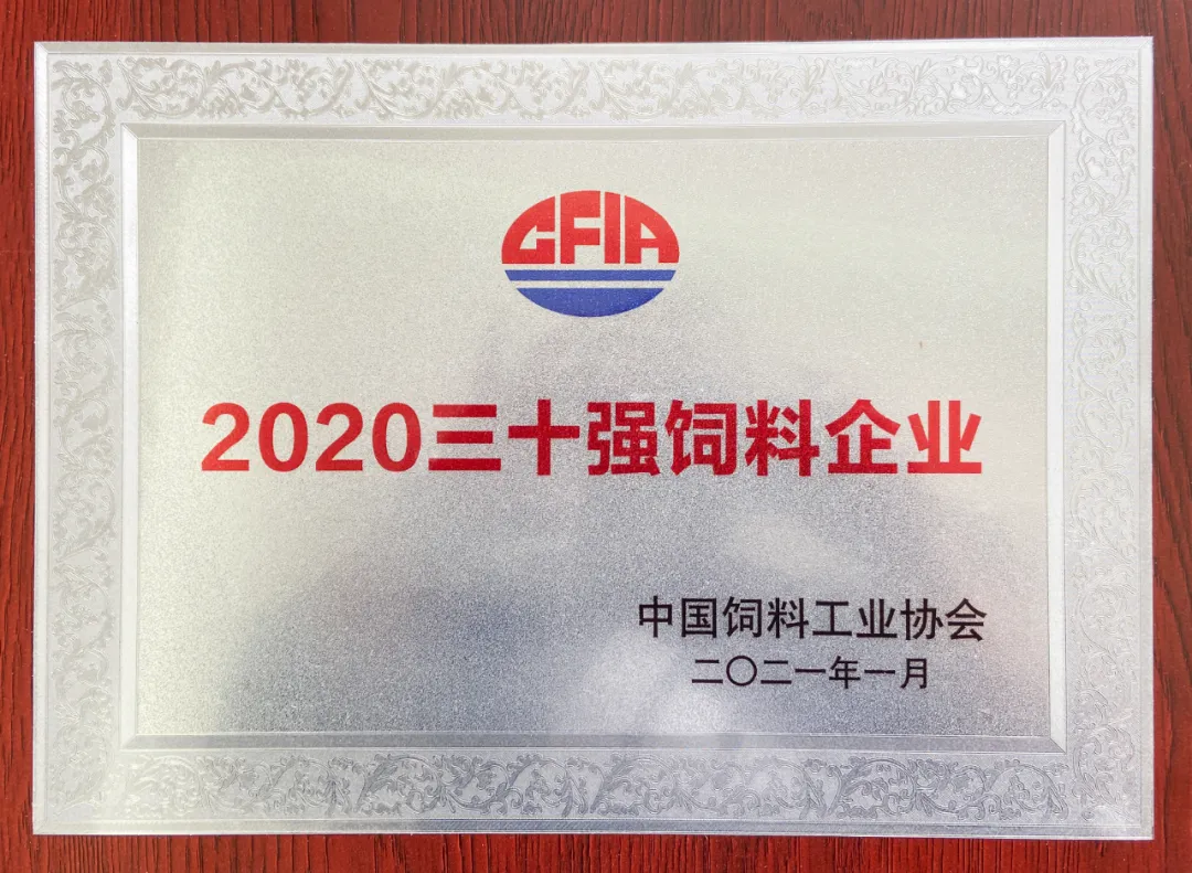 """喜报!正邦获颁 """"2020三十强饲料企业""""荣誉称号"""