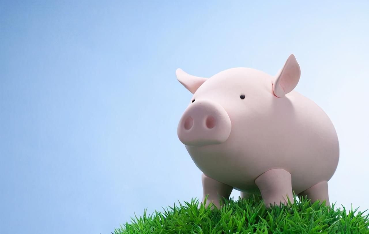 """22日10公斤仔猪价格,猪价震荡不止,如今轮到仔猪""""表演""""了?"""