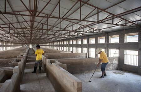 养猪选择合适的生产模式最重要,小型养猪场猪舍建设9要点!