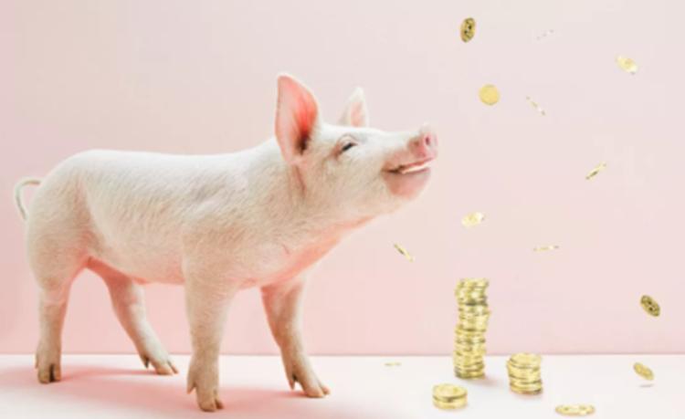 4月26日30斤仔猪价格,猪价成谜,相比外购仔猪,二次育肥才是王道?