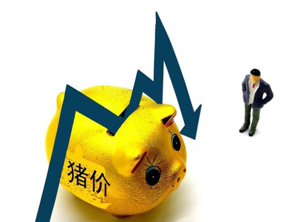 猪价跌势难止,全力上攻或难实现?卓创:5月份猪价利空偏多