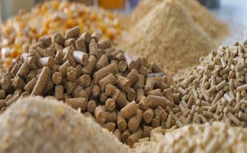 新版兽药GMP提高行业准入门槛,中小兽药企业该如何应变?