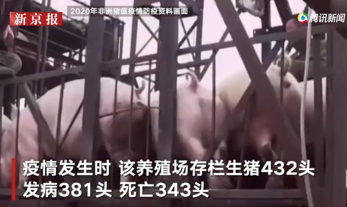 内蒙古一养殖场发生非洲猪瘟疫情343头生猪死亡 疫情处置和流调正在进行
