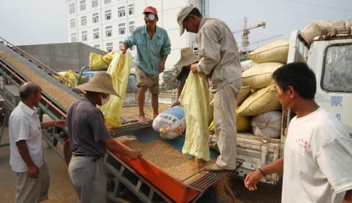 """1.55亿人陷入""""粮食危机"""",全球粮价连涨11个月,会挨饿吗?"""