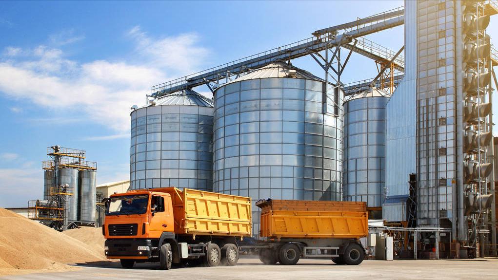 200万吨!5月玉米到港量庞大,小麦进入收割季,玉米涨势被夭折?