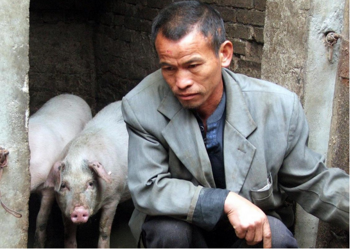 又一噩耗传来!危险的何止10元猪价?真正考验养殖户的时候到了!