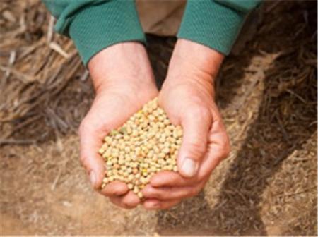 玉米涨50%!豆粕涨100!五月第二波饲料涨价来了!最高涨160元/吨