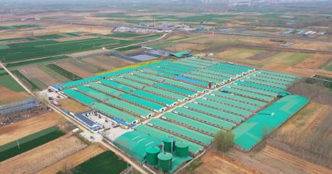 现代化养殖企业神农集团即将上市,全产业链模式铸就核心竞争壁垒