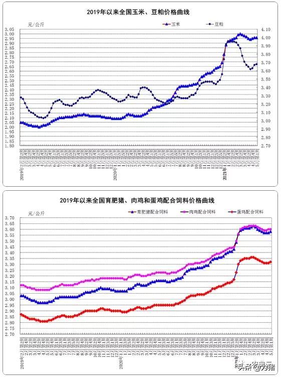 最新数据!生猪均价同比下降32.5%,猪饲料同比上涨13.3%