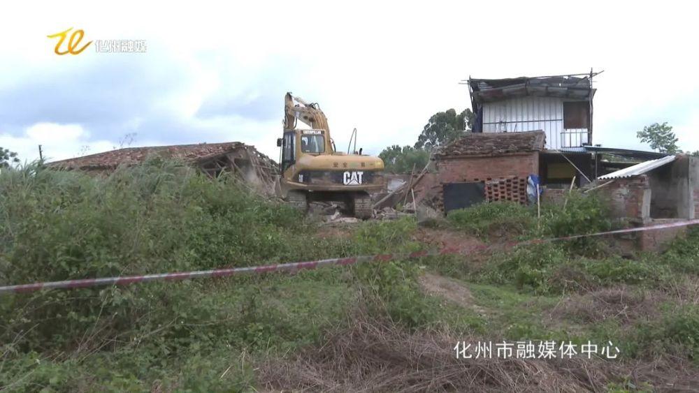 关注:化州一占地200多平方米养猪场被夷为平地!
