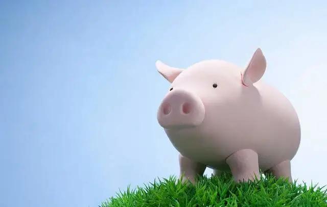 """生猪价格涨跌不定,后市""""风向""""如何?业内说法现分歧,你咋看?"""