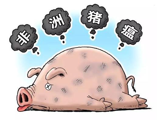罗马尼亚29县暴发非洲猪瘟300起,共计140163只家猪受到感染!