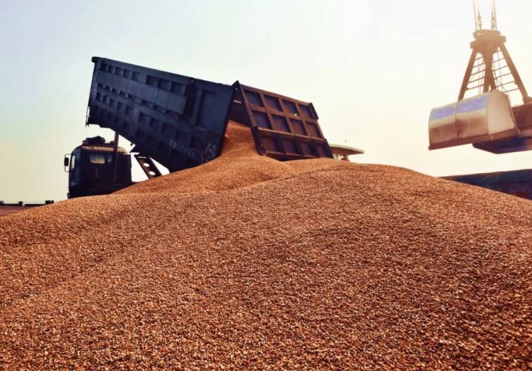 大豆进口再来!4月进口高达745万吨,同比增长11%